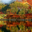 WWF Report Highlights The Impact Of Climate Change In Scotland